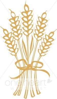 Grains clipart wheat stalk. Clip art bing images