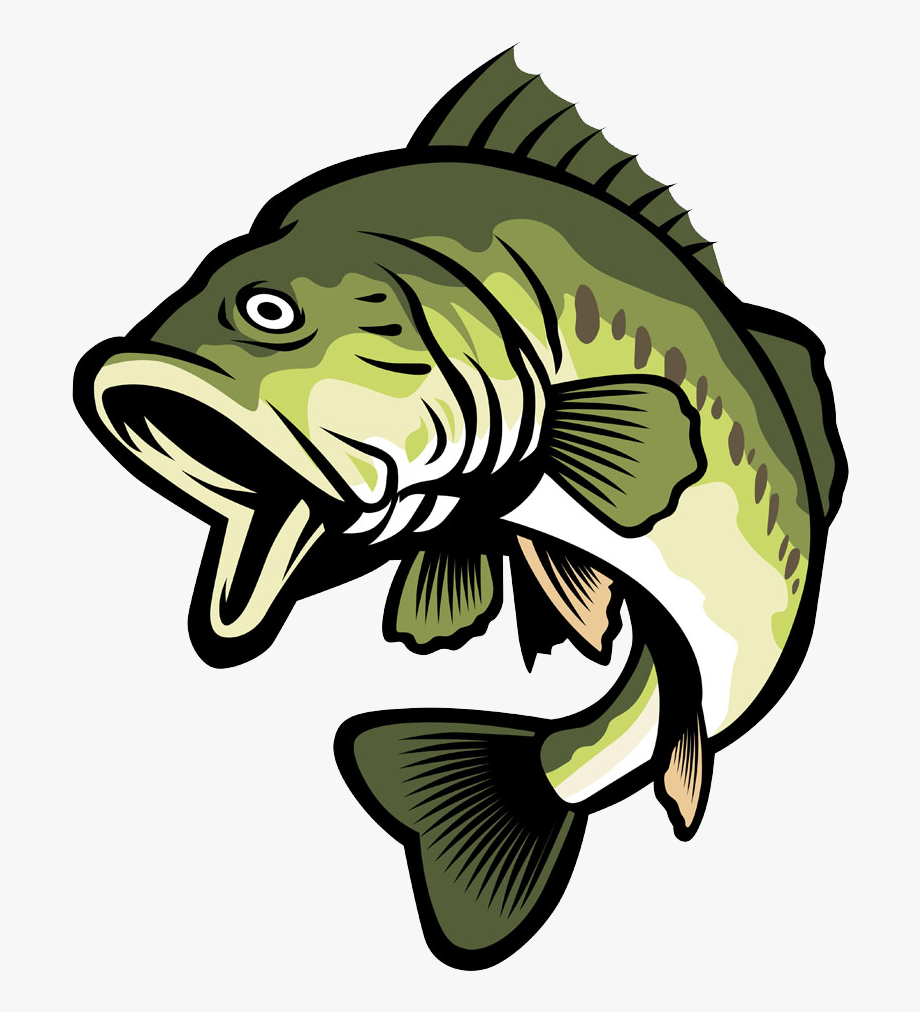 Bass clipart. Fish free cliparts on