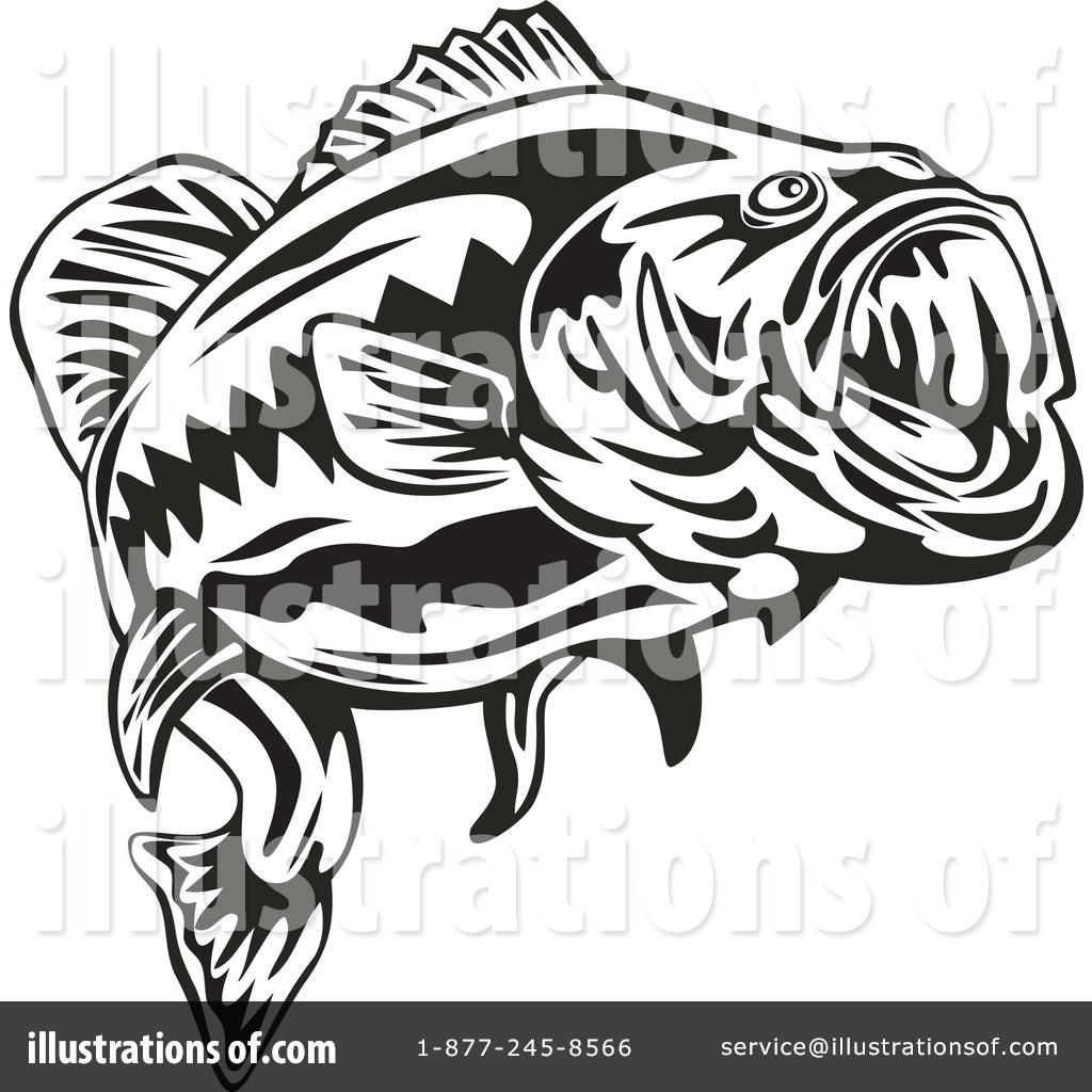 Bass clipart bass fish. Illustration by patrimonio royaltyfree