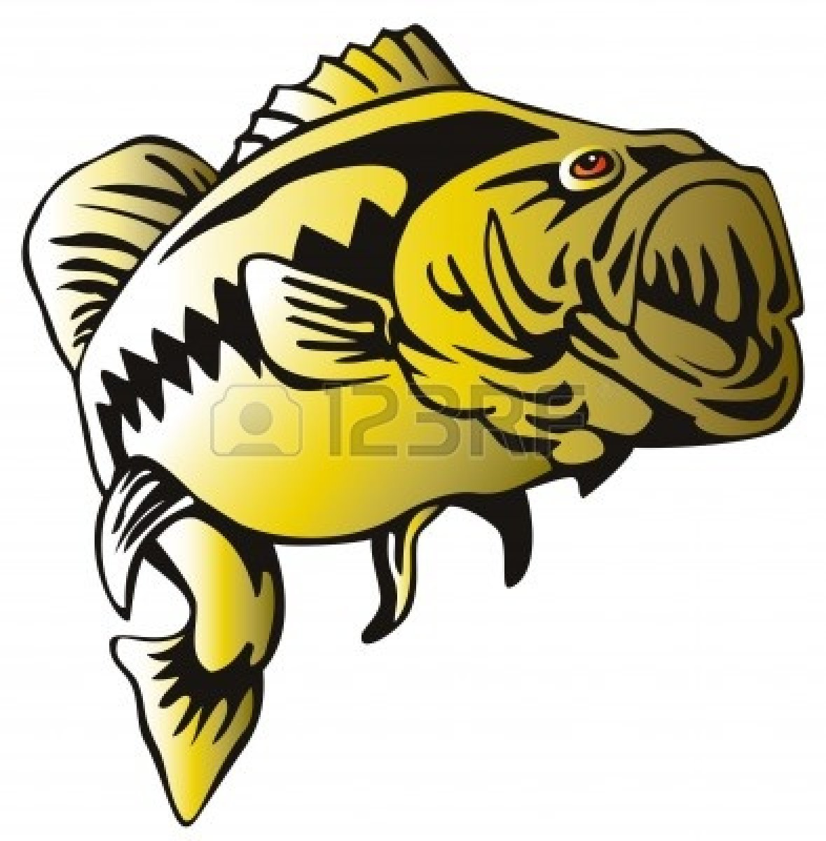Bass clipart bass fish. Fishing largemouth panda free