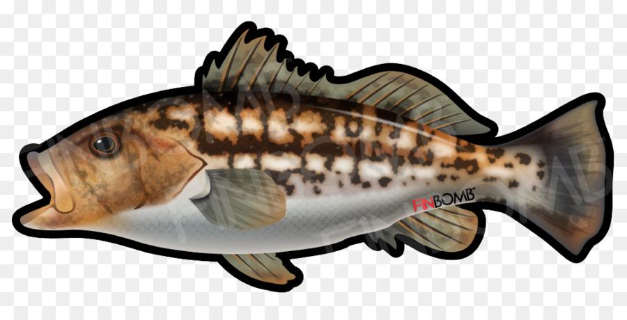 Fishes kelp sticker decal. Bass clipart bony fish