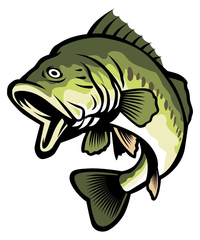 Stock illustration clip art. Fishing clipart striped bass