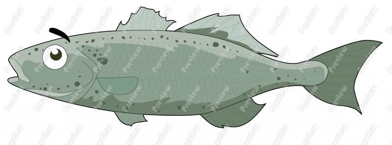 Sea clip art royalty. Bass clipart cartoon