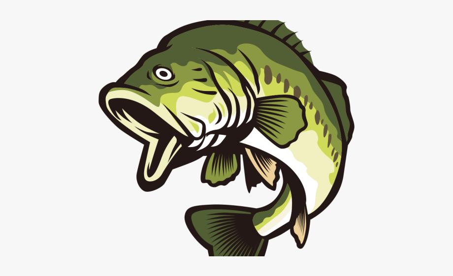 Bass clipart cartoon. Fish largemouth