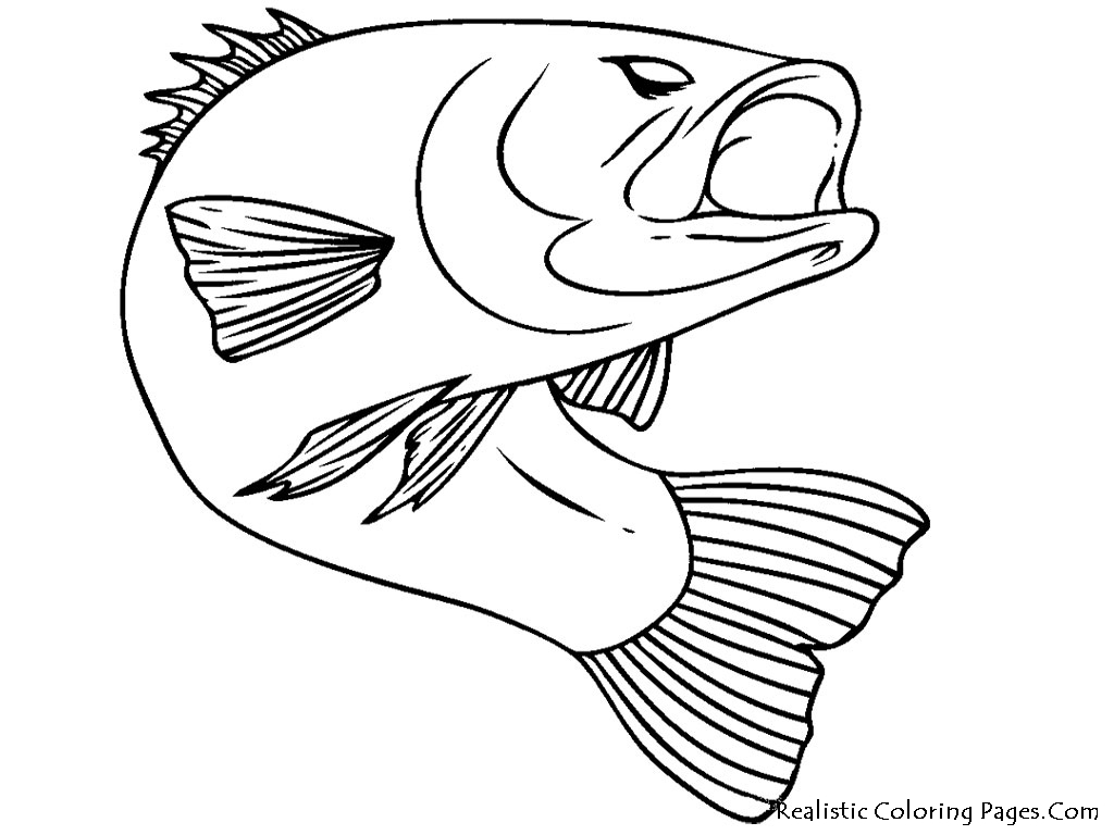 Top 100 fish coloring pages: Cute free printables coloring page ... | 768x1024