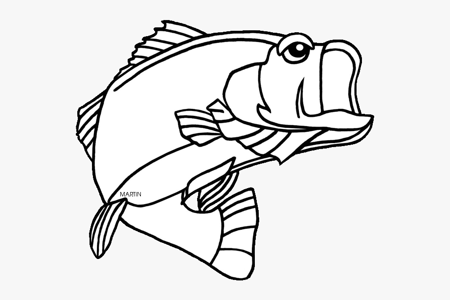 Bass Clipart Coloring Page, Bass Coloring Page Transparent FREE For  Download On WebStockReview 2020