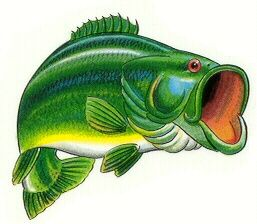 best fishing images. Bass clipart cute