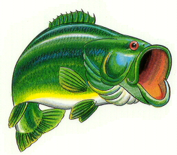 Bass clipart cute. Free fish cliparts download