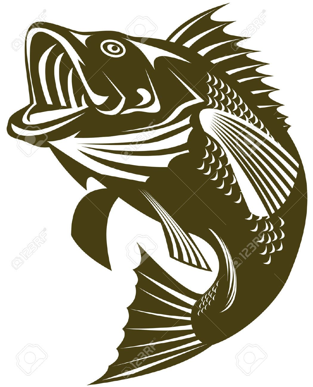 Trout clipart largemouth bass. Cliparts stock vector and