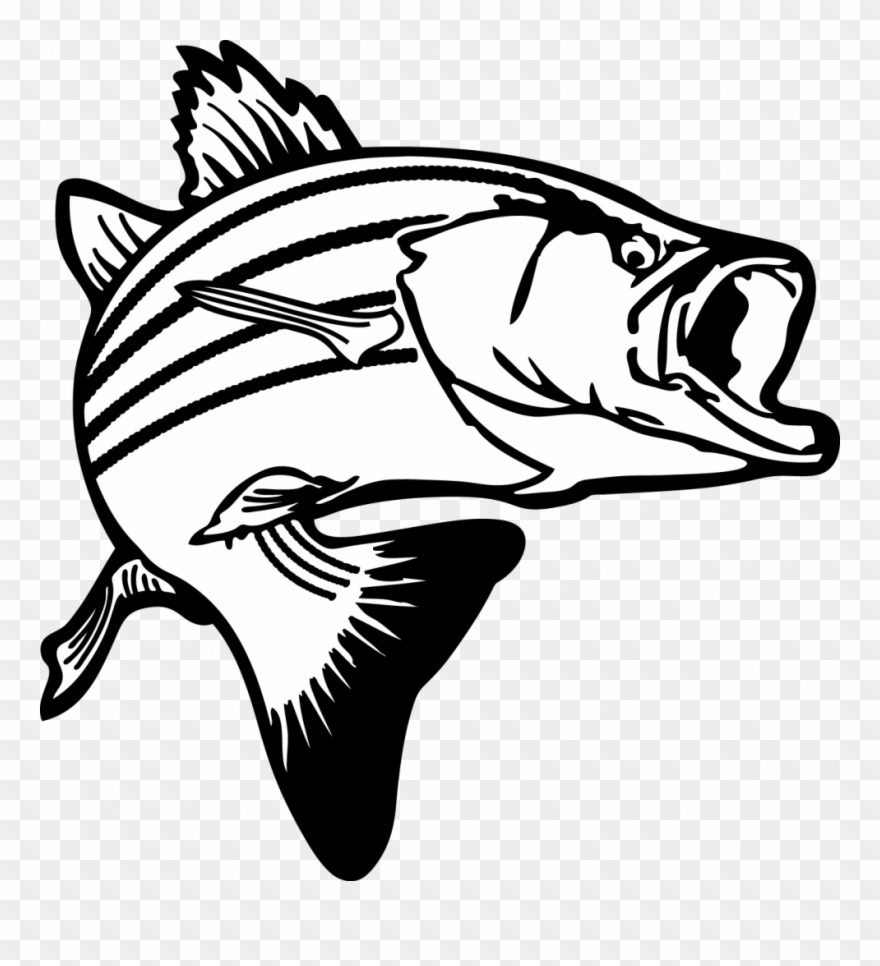 Special images free clip. Fishing clipart fish