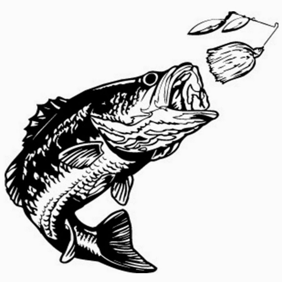 Get hooked youtube . Bass clipart fishing tournament