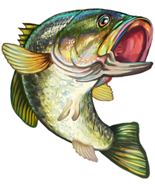 Image jumping game fish. Fishing clipart bass