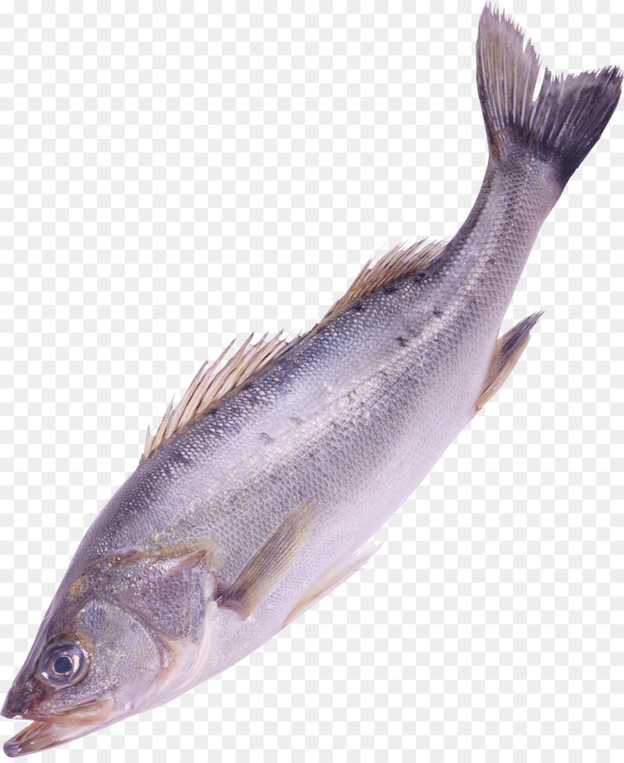 Bass clipart milkfish. Fish clipping path clip