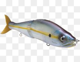 Bass clipart milkfish. Fishing png and psd