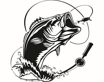 Trout clipart cool. Bass free download best