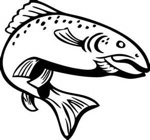 Drawing outline bing images. Bass clipart rainbow trout