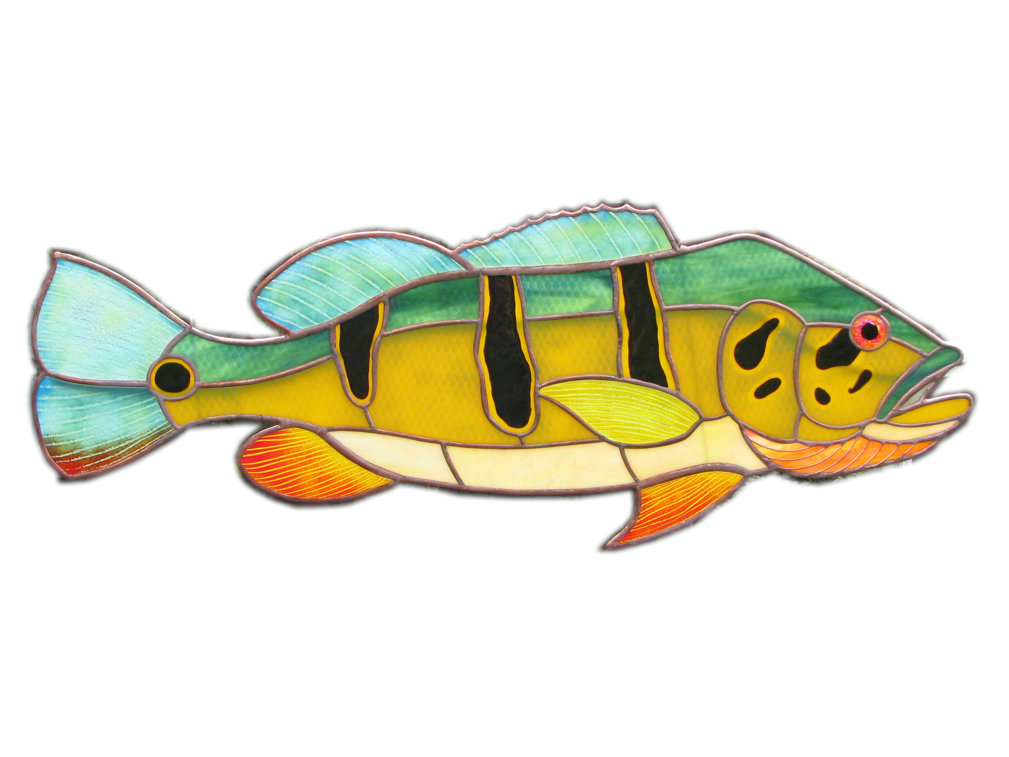 Fresh water fish stained. Bass clipart rainbow trout