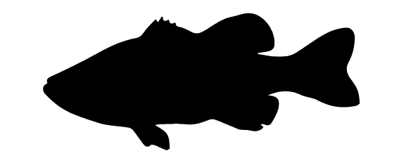 Bass clipart silhouette. Fish images gallery for
