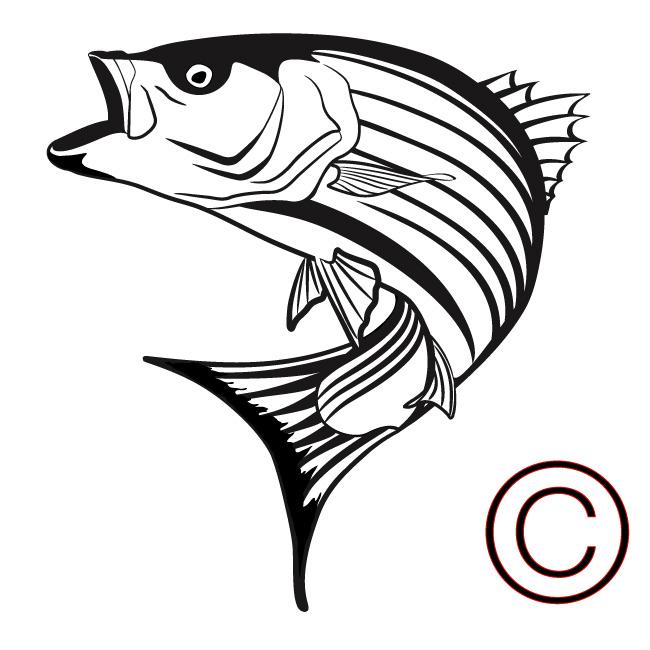 Bass clipart sketches. Fishing drawing at getdrawings