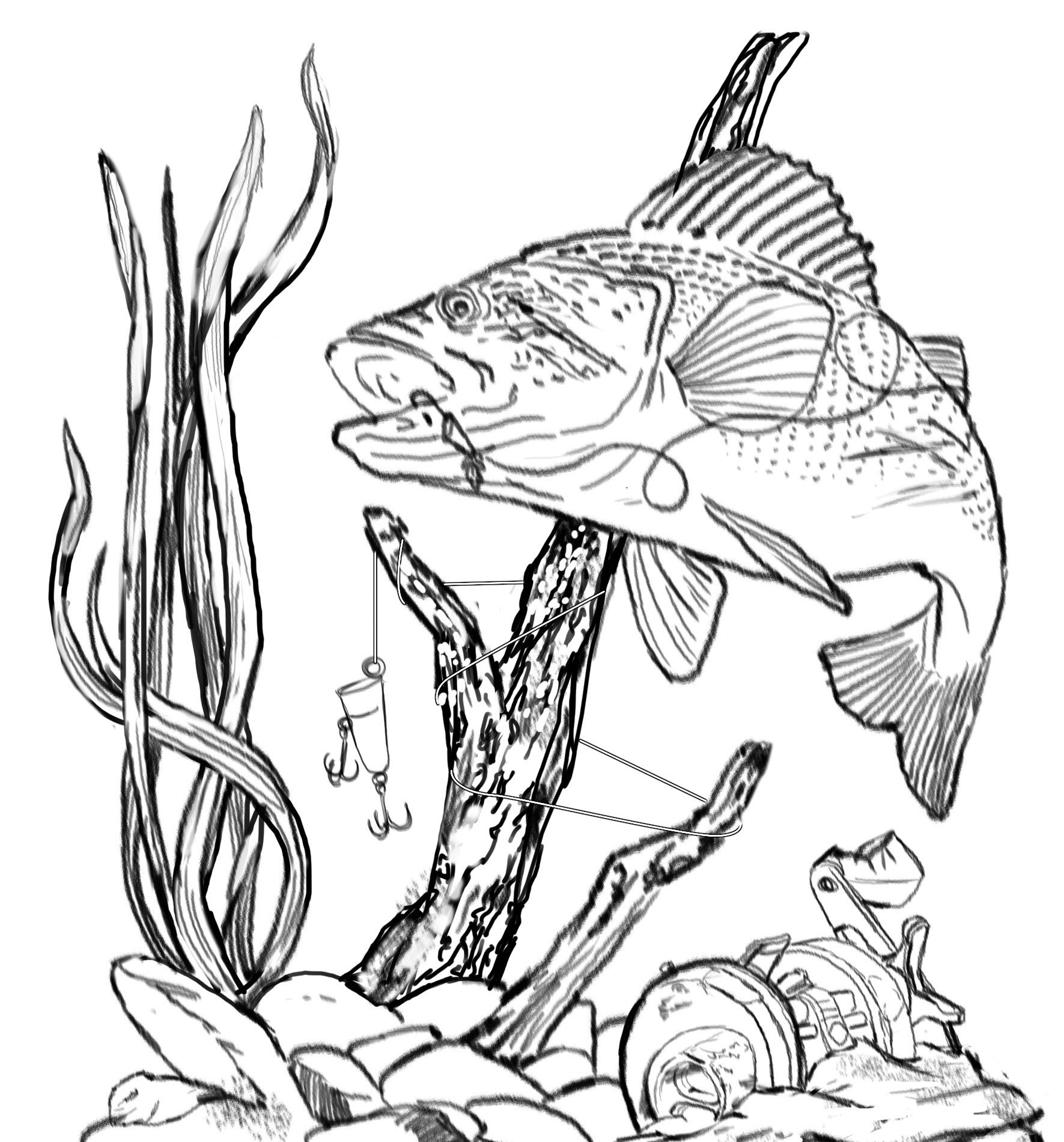 Fishing clip art other. Bass clipart sketches