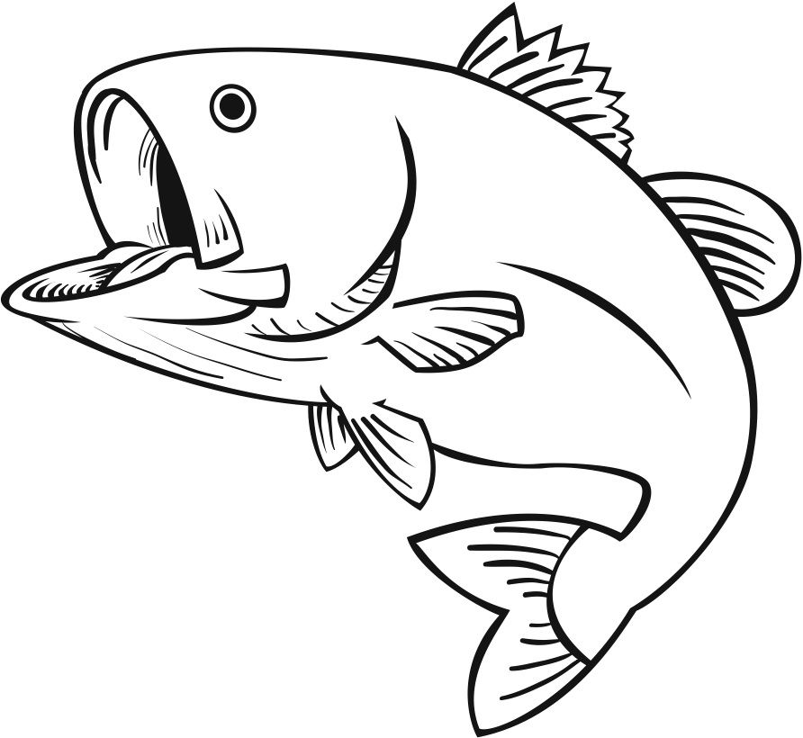 Cliparts stencils fish drawings. Bass clipart sketches