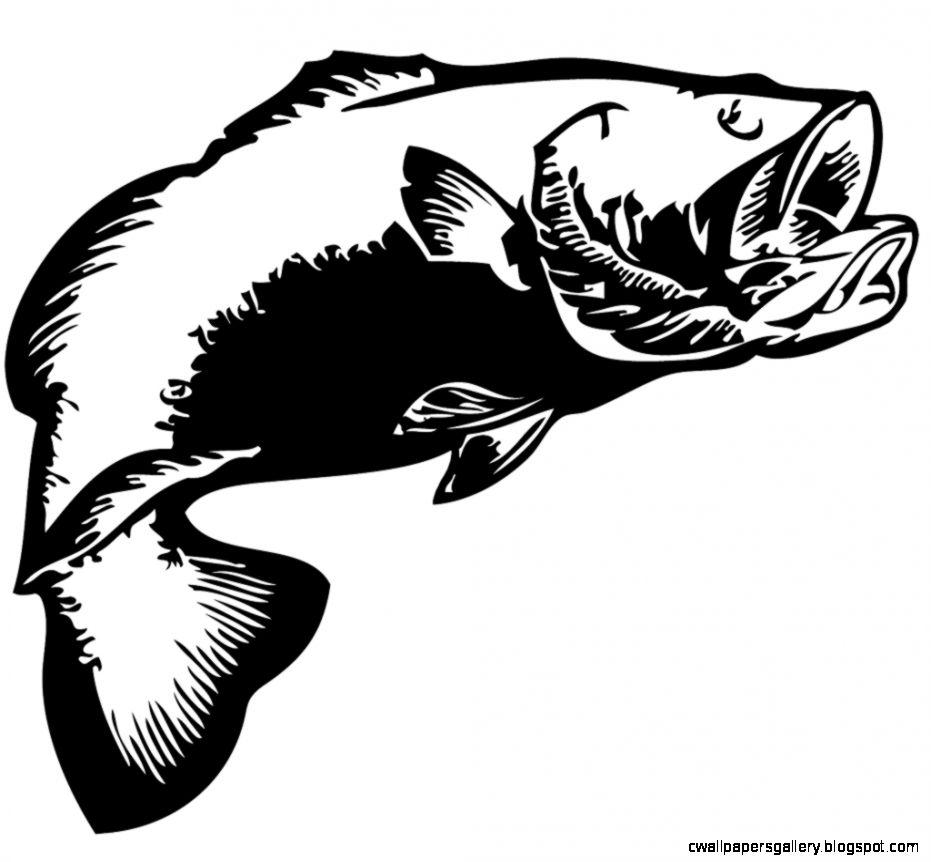 bass clipart smallmouth bass
