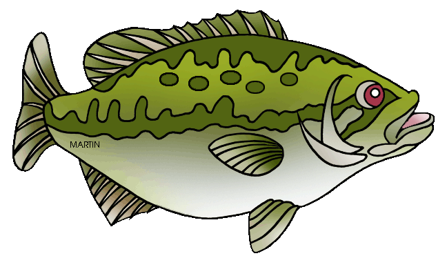 United states clip art. Trout clipart spotted bass