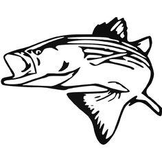 Fish outline clip art. Bass clipart striped bass