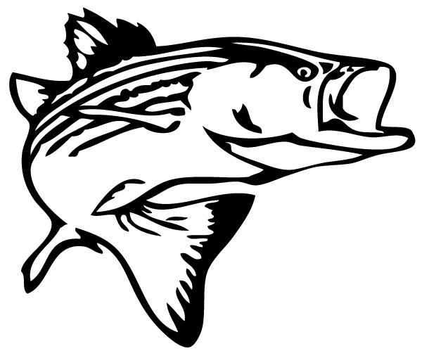 Fishing clipart striped bass. Fish outline clip art