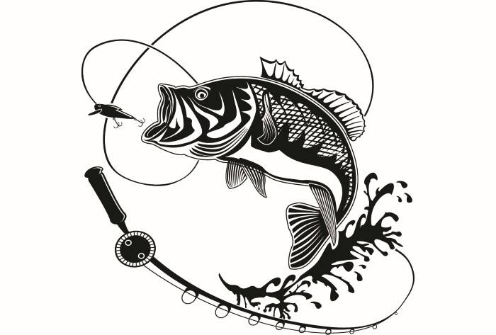 Bass clipart svg. Perch fishing logo angling