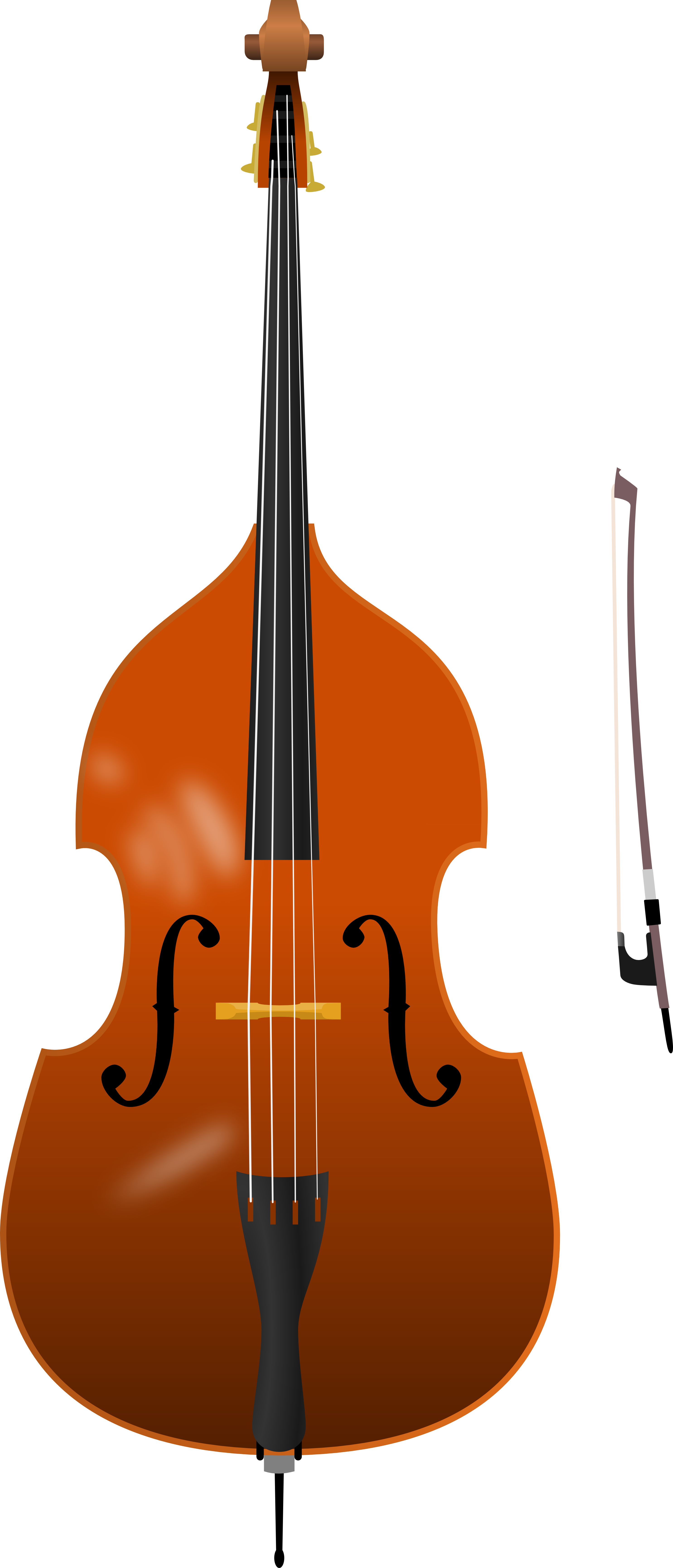 collection of double. Bass clipart transparent