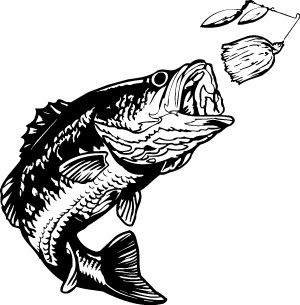 Bass magz free download. Fishing clipart vector
