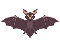 Free clip art pictures. Bat clipart