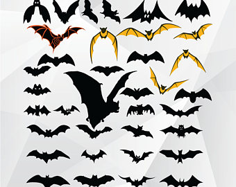 Bat clipart bird. Silhouette etsy svgpngjpgbat for