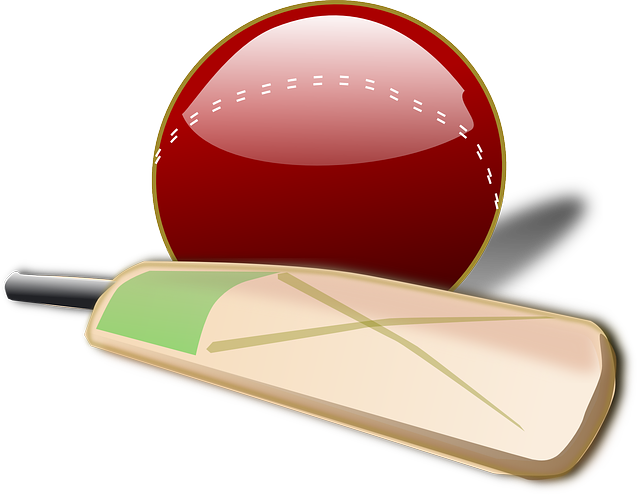 Clipart ball cricket bat. Png image player collection