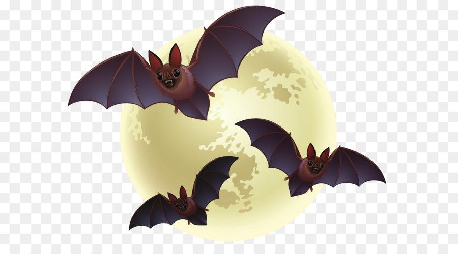 Bats creepy