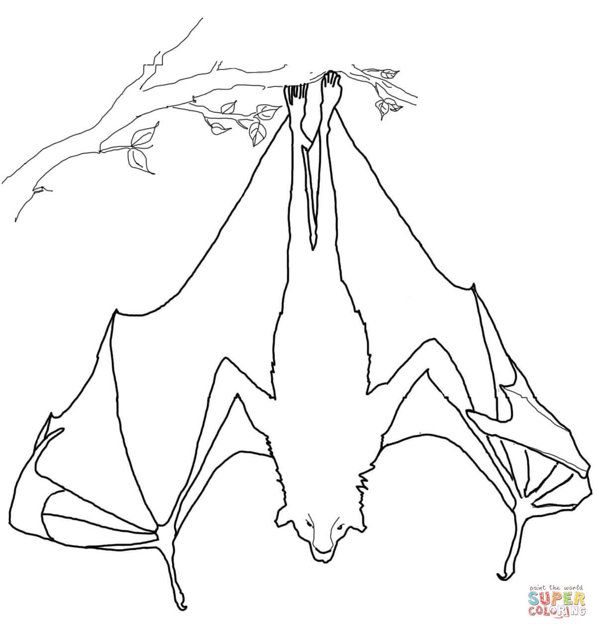 Bat clipart flying fox. Coloring pages free hanging