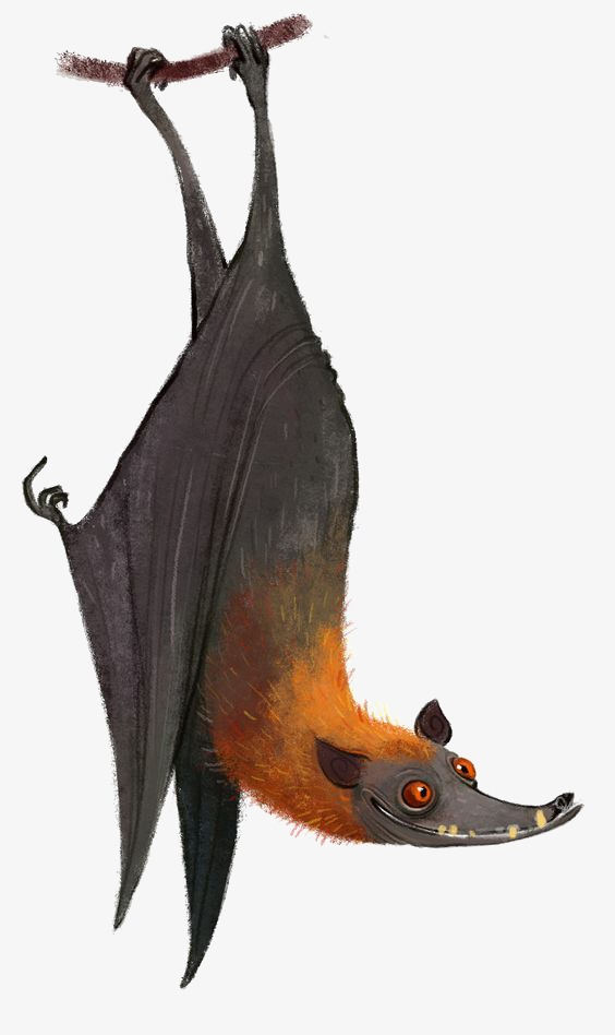 Bat clipart flying fox. Inverted cartoon hand painted