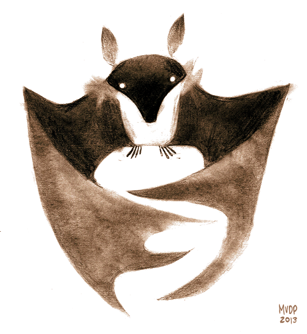 Sketch by sketchinthoughts on. Bat clipart fruit bat