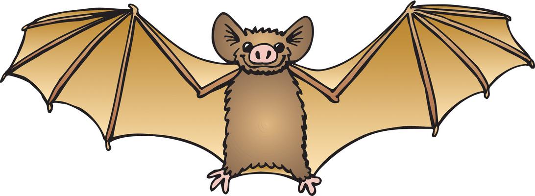 Bat clipart fruit bat. Clip art free panda