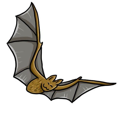 Illustrating children s books. Bat clipart fruit bat