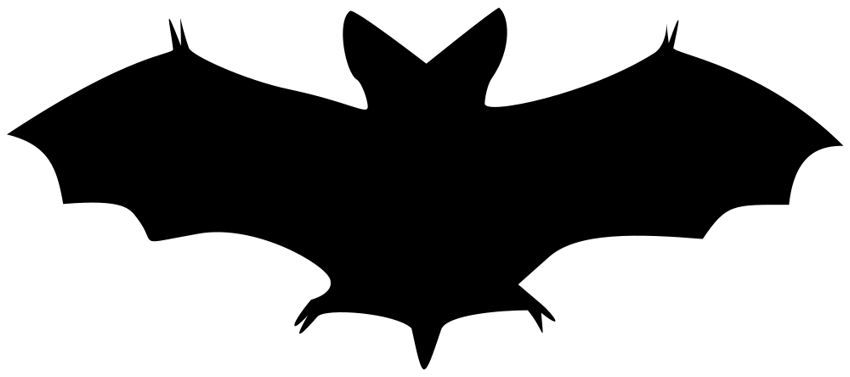 bat printable clipart halloween clip webstockreview
