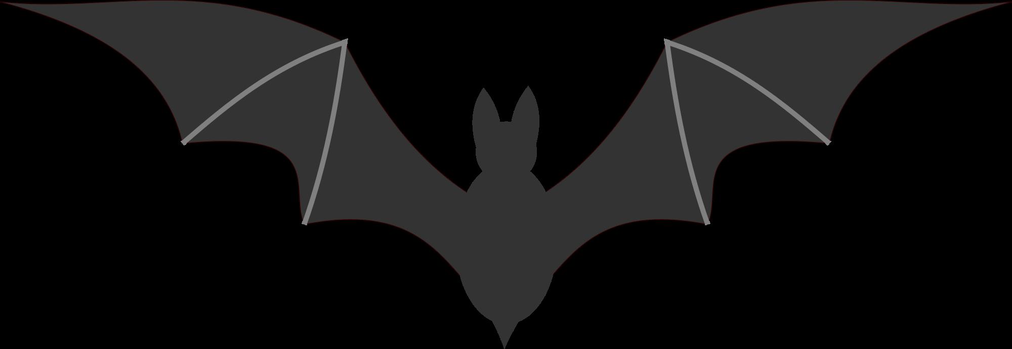 Png . Bat clipart transparent background