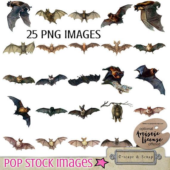 Bat clipart vintage. Sale digital collection creepy