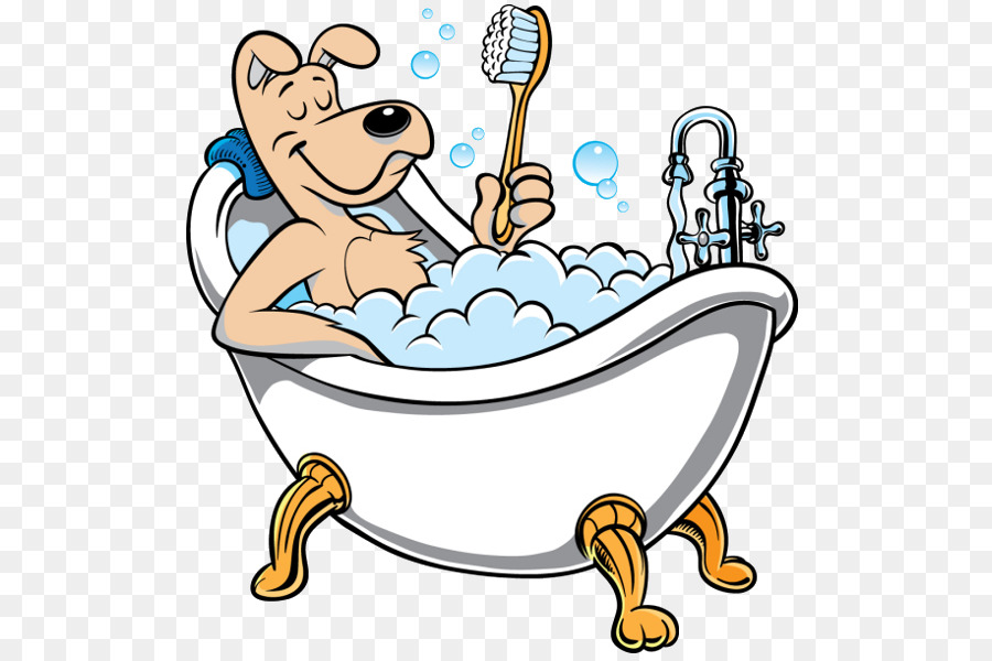 Poodle puppy cat dog. Bath clipart
