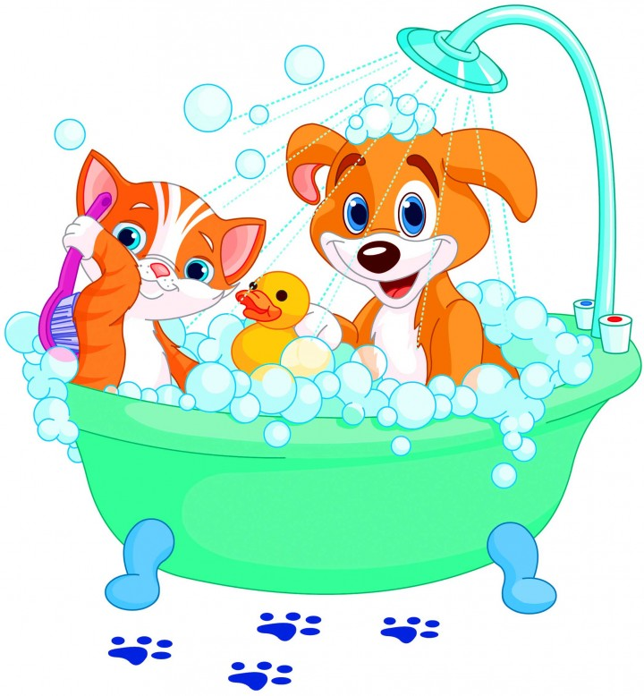 Diggity dog pet grooming. Bath clipart cat