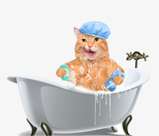 Bath clipart cat. Tub bathtub happy png