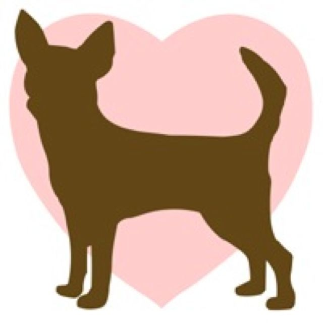 Bath clipart chihuahua.  best images on