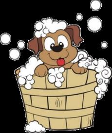 Bath clipart dog bath. Groom want us to