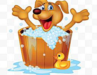 Bath clipart dog bath. Bark self serve wash